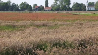 Weilanden Waterland